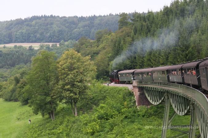 foresta7.jpg